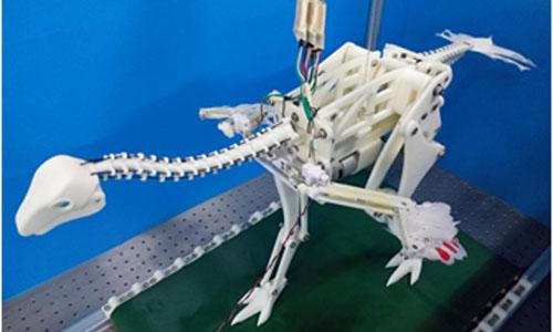A model of a robo-Caudipteryx